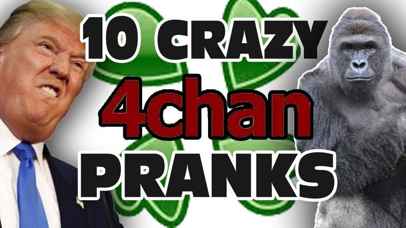 Top 10 Craziest 4chan Pranks - GFM (Part 4)