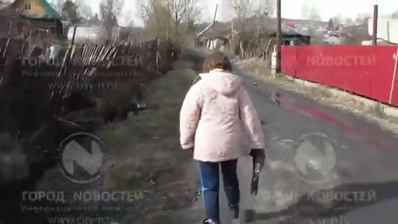 Типичный выпуск новостей Новокузнецка