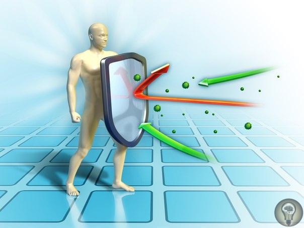 Все об иммунитете 1. 10 фактов об иммунной системе.2. Чудо иммунной системы человека3. Тайны иммунитета: загадки и разгадки4. Как работает иммунитет5. Иммунитет6. О.Бутакова. Тайны