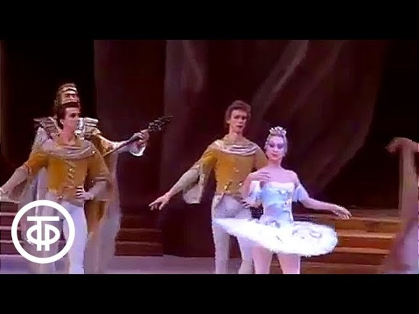 Вечер балета , посвященный 175-летию со дня рождения балетмейстера Мариуса Петипа (1993)