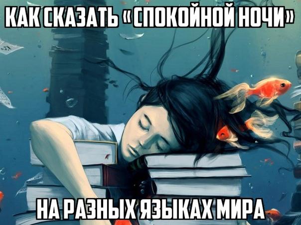 Как сказать «Спокойной ночи» на разных языках мира