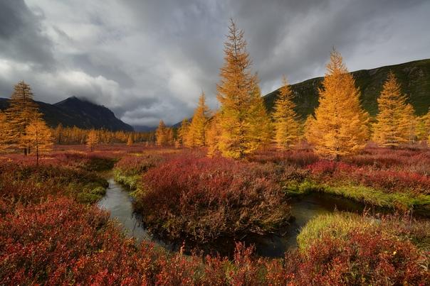 Красочная осень на Колыме