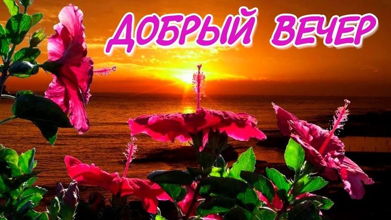 Добрый вечер! Красивая музыкальная видео открытка.