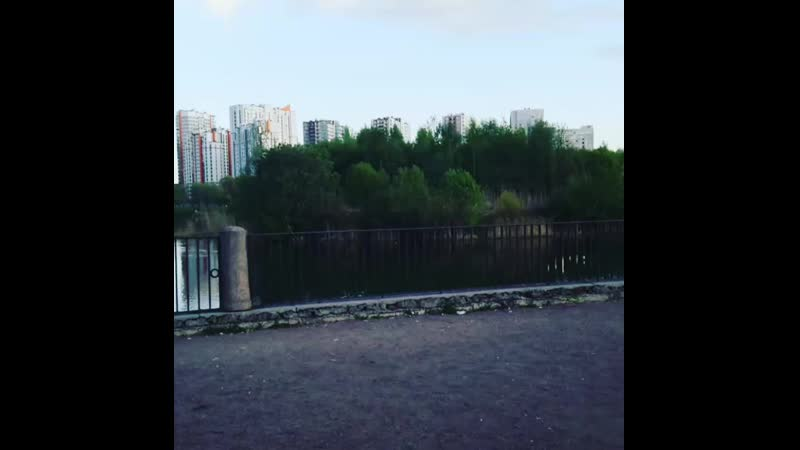 Купить квартиру у Пулковского парка м. Звёздная, Санкт-Петербург