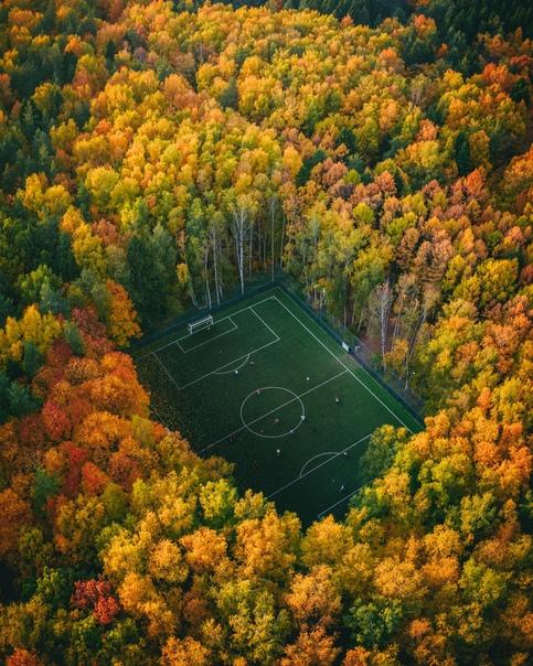 Футбол в лесу. Фото: Юра Борщев