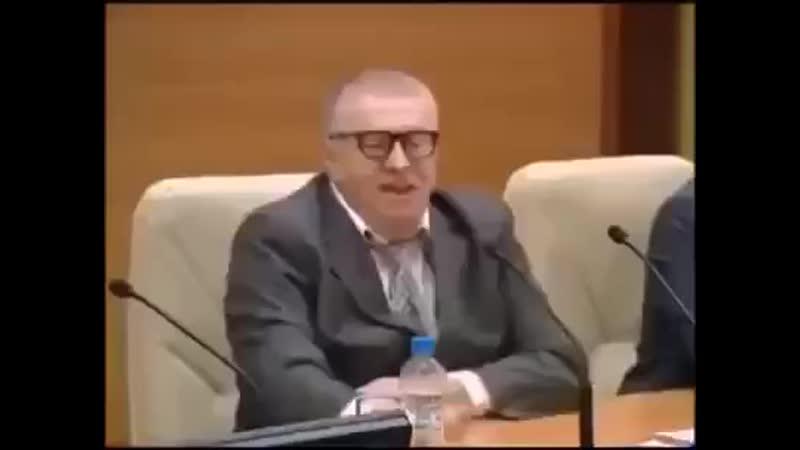 Перл Жириновского