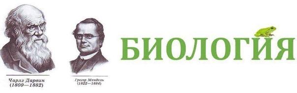 🔥ҰБТ 2020 БАЗАСЫ🔥