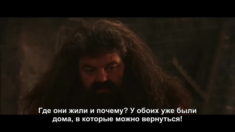 The Dom Lost in Adaptation Harry Potter and the Philosophers Stone (rus sub)