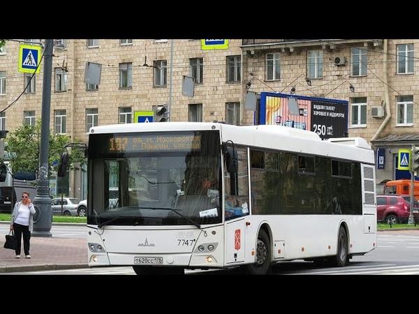 Автобус 187 Ул Типанова Пушкин вокзал