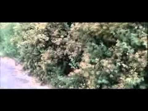 26 05 Аэропорт Донецк фильм Битва за воздух