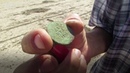 Сокровища «казанской Атлантиды»: что находят на дне обмелевшей Волги?