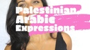 I WANT THIS SO BAD Palestinian Arabic Expressions 12 جاي عَ بالي