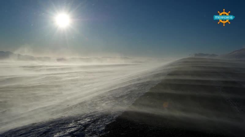 Зона пустыни 1. Арктика