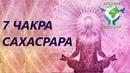 7 чакра сахасрара. Причины блокировки И способы открытия сахасрара чакры. Николай Пейчев.
