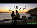 33 минуты про наш отдых в Египте شرم الشيخ 540 $ на двоих