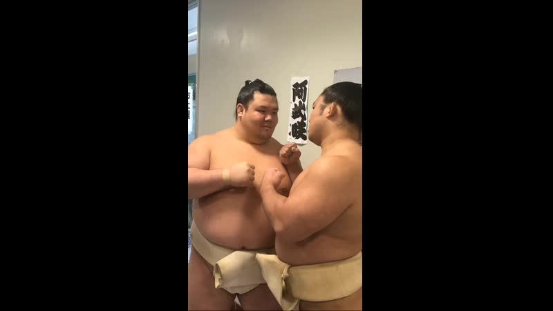 春巡業柏市 - お客様との握手会スタンバイ中の阿武咲と石浦 - sumo 相撲