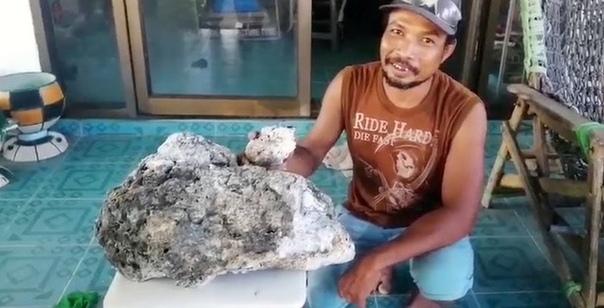 Собиратель мусора нашел амбру на 700 тысяч долларов