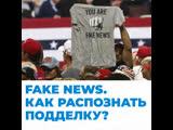 Fake news. Как распознать подделку?