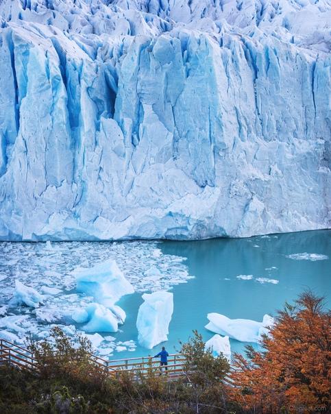Вид на ледник Перито Морено