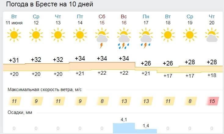 Жара в Бресте: до +34 и намёк на какой-то дождь только в воскресенье
