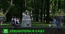 В честь юбилея Летний сад Петербурга украсят цветами и музыкой
