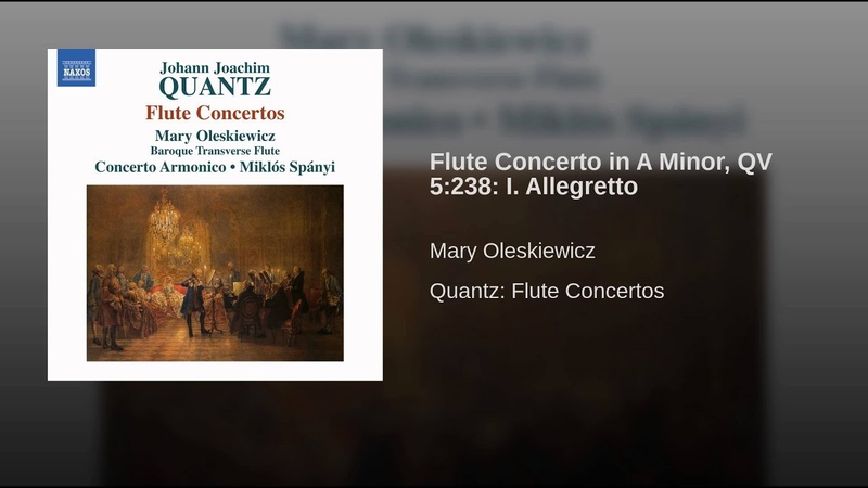Flute Concerto in A Minor QV 5 238 I Allegretto