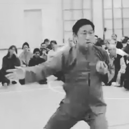 "ChenJiaGou Taiji - Chicago on Instagram ""Classic display of fali.chenjiagou chentaijiquan"""