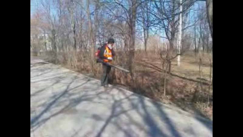 Разговор с рабочим, убирающим листву в парке с помощью воздуходувки