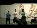 Wang Zhihai Seminar - miao dao applications and softness