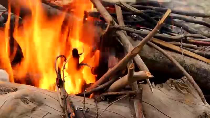 Запеченная щука в углях