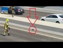 Police rescue a kitten in the middle of the road : A Cat that got stuck in busy Highway