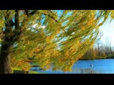 Скоро Осень Господа... Павел Соколов!!