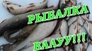 КЛАССНАЯ рыбалка на КРАЙНЕМ СЕВЕРЕ! ВОТ ЭТО ВЫЕЗД