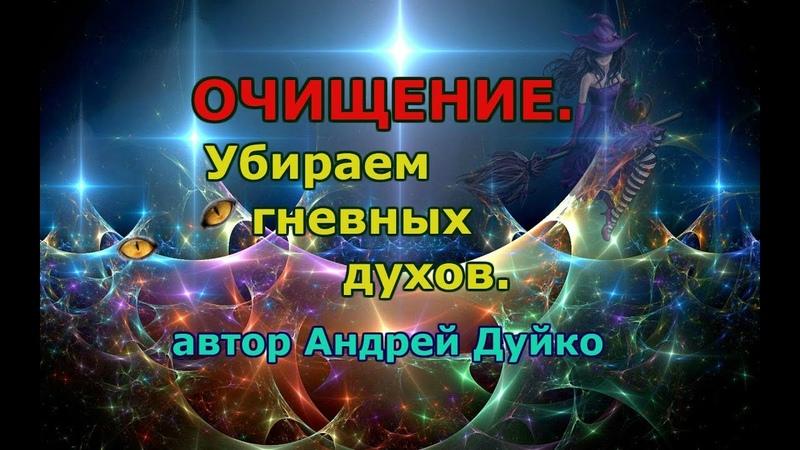 ОБРЯД ОЧИЩЕНИЯ ОТ ГНЕВНЫХ ДУХОВ. Андрей Дуйко.
