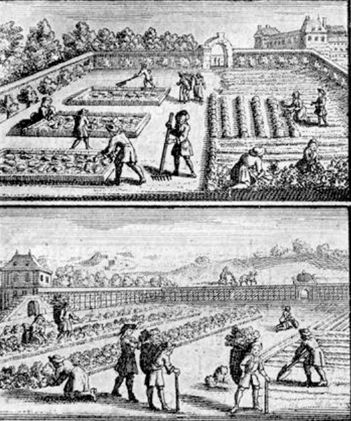 ВЕРСАЛЬ: УГОЛКИ ДЛЯ КОРОЛЕВСКОГО ДОСУГА Версаль Начинались великие планы большой грязью и тяжелыми земляными работами. В мае 1661 году приступили к работам по осушению и преобразованию