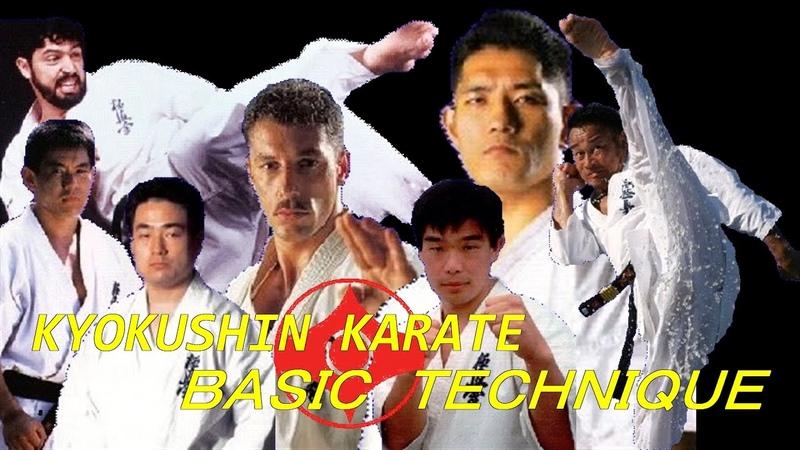夢の共演 極真空手 BASIC TECHNIQUE kyokushin karate