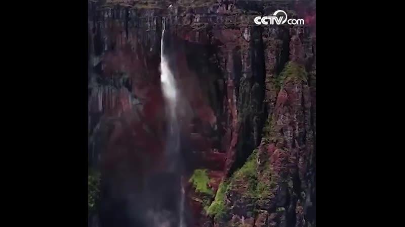 Экстремал выполнил прыжок с парашютом с вершины самого высокого водопада в мире