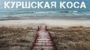 Куршская коса, Калининградская область 🇷🇺 3 маршрута и Клайпеда, Литва 2019