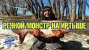 Огромная рыба на Иртыше - речной монстр