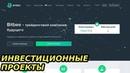 Куда инвестировать лишние деньги в интернете. Bitbee проект 29