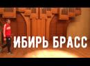 Сибирь Брасс