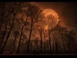 Klaus Schulze - The Theme The Rhodes Elegy