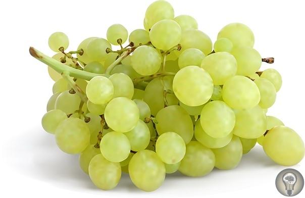 Полезные свойства винограда. Что такое ампелотерапия