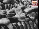 Документальный фильм о производстве и продаже хлеба в СССР (1947 год) - со звуком.