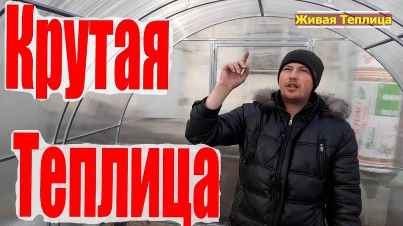 Теплицы в Челябинске лучший проект своими руками