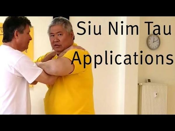 Applications of Siu Nim Tau of Snake Crane Wing Chun by Sifu Wayne Yung Siu Lim Tau