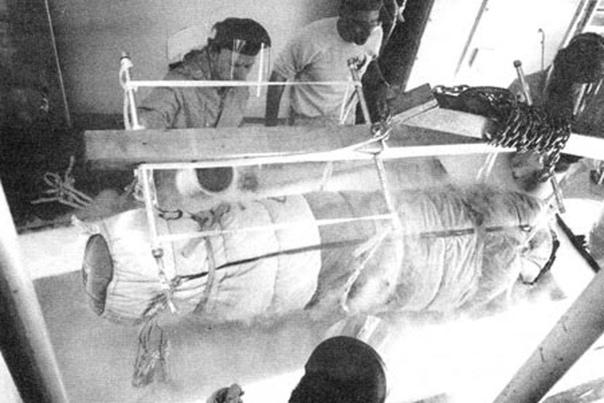 Первая в мире криоконсервация, 12 января 1967 года в США