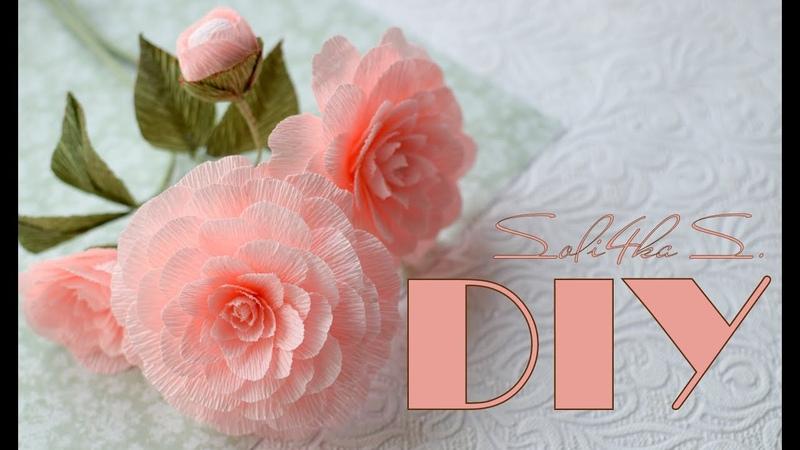 DIY soli4ka_s Красиві квіти з гофропаперу/ камелия с гофрированной бумаги/ crape paper camellia