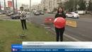 Гелиевые шары наносят огромный вред живой природе