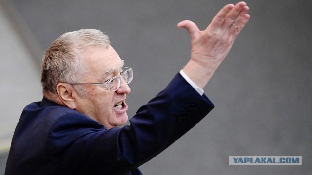 Жириновский: «Кокорин и Мамаев сидят в тюрьме, а Гулиев отделался штрафом. Как такое выходит?»